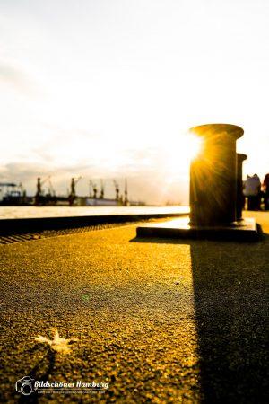 Hamburg Bild St.Pauli Landungsbrücken Poller im Gegenlicht